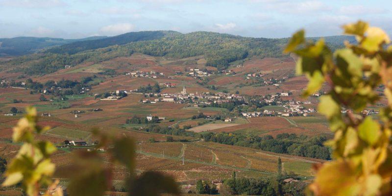 Quincié vue du Mont Brouilly en automne